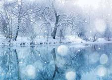 冬天悄悄到来 说明什么